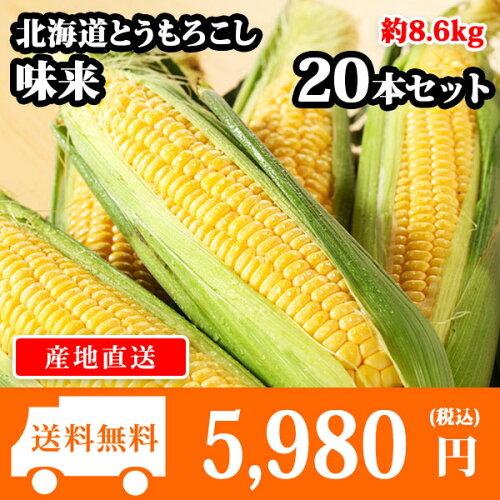 北海道産 とうもろこし 味来 みらい 20本(L-LLサイズ/約8.6kg) トウモロコシ/BBQ/バ...