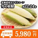 北海道産 ホワイトコーンとうもろこし 22-24本 トウモロ...