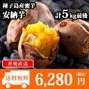 【予約受付中】種子島産 安納芋 15-25本前後/計5kg前後 さつまいも/サツマイモ/焼き芋/蜜芋 送料無料 ◆出荷予定:2017年10月上旬-2018年3月上旬
