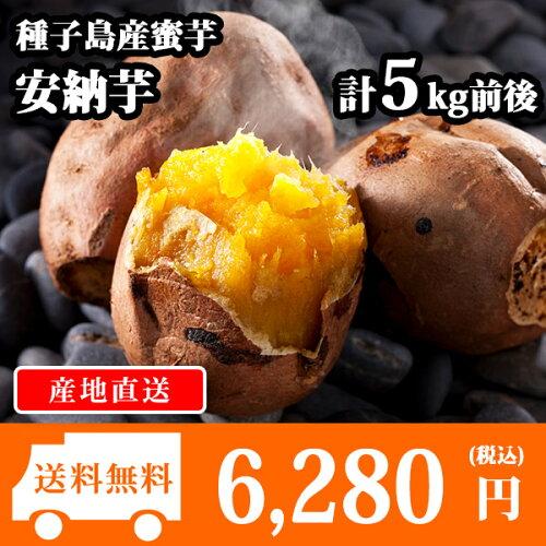 種子島産 安納芋 15-25本前後/計5kg前後 さつまいも/サツマイモ/焼き芋/蜜芋 送料無...