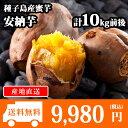 【予約受付中】種子島産 安納芋 30-50本前後/計10kg前後 さつまいも/サツマイモ/焼き芋/蜜芋 送料無料 ◆出荷予定:2017年10月上旬-2018年3月上旬