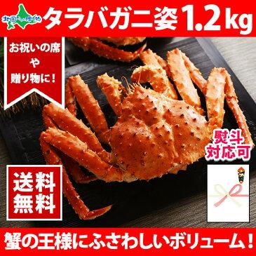 タラバガニ姿 1.2kg お歳暮 御歳暮/かに/カニ/蟹/蟹姿/たらばがに/たらば蟹/タラバ蟹/1.2キロ/送料無料/すがた/ギフト