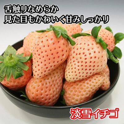 熊本県産淡雪イチゴ