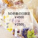 ミモザ お買い物マラソン 花材 詰め合わせ 数量限定 福袋