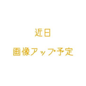 オズワルド ボールペン&シャープペン ジェットストリーム ペン ディズニー グッズ お土産【東京ディズニーリゾート限定】