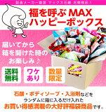 【数量限定】福を呼ぶ MAXハッピーボックス【第12弾】 送料無料