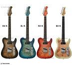 Bacchus バッカス TACTICS-BP/R バールポプラ トップ エレキギター テレキャスター タイプ ユニバース シリーズ テレキャスター ギター エレキ  TACTICS BP