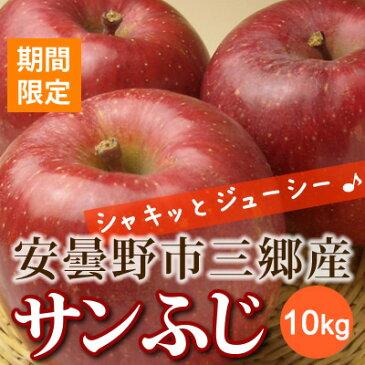 あづみ野フルーツマイスター サンふじ りんご 長野県 安曇野市三郷産 10kg