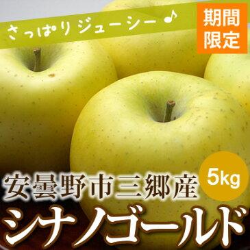 あづみ野フルーツマイスター シナノゴールド りんご 安曇野市三郷産 5kg