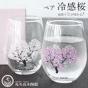 ペアグラス ギフト【冷感 桜 フリーグラス ペアセット】 2