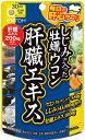 【メール便 送料無料】しじみの入った牡蠣ウコン肝臓エキス 120粒 井藤漢方製薬【RH】