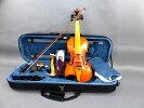6弦バイオリン03