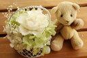 【即納】 プリザーブドフラワー 電報 結婚式 結婚祝い 誕生日プレゼント テディベア ブラウン セレナ ホ...