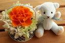 【即納】 プリザーブドフラワー 電報 結婚式 結婚祝い 誕生日プレゼント テディベア ブルー と セレナ オレンジ