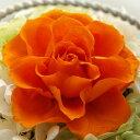 【即納】 プリザーブドフラワー 結婚祝い 誕生日プレゼント Serena セレナ ?07 オレンジ?
