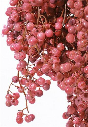 【即納】ペッパーベリー ピンク 小分け 約10g プリザーブドグリーン プリザーブドフラワー花材 【大地農園】