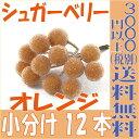 【即納】 シュガーベリー 12mm【オレンジ 小分け 12本入】 ネイチャーデザインズ