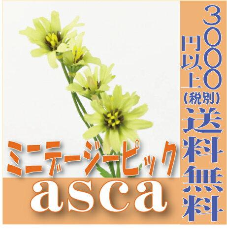 【即納】 ミニデージーピック【セロリ 小分け 1本入】 asca アスカ