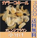 【即納】 73666 羽根 フェザー カラーコキール【オレンジブラウン 小分け 約0.5g入】 東北花材