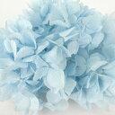 【即納】 プリザーブドフラワー 花材 ソフトゆめ アジサイ・ヘッド【ブルー 小分け】大地農園