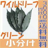 【即納】 プリザーブドフラワー 花材 ワイルドリーフ 【グリーン 小分け 約5枚入】 アルテフロール