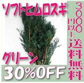 【即納】 プリザーブドフラワー 花材 30%OFF ソフトヒムロスギ【グリーン 袋 約120g入】 杉 大地農園