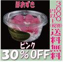 【即納】 プリザーブドフラワー 花材 30%OFF ほおずき【ピンク】ホオズキ 6輪 南原農園