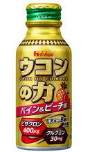 【送料無料】ウコンの力 パイン&ピーチ味 1ケース(100ml×30本)