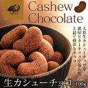 生カシューチョコ 100g Dari K ( ダリケー )【カシューナッツ/チョコレート/ポリフェノール/カカオ/高級 チョコレート/高級 スイーツ】