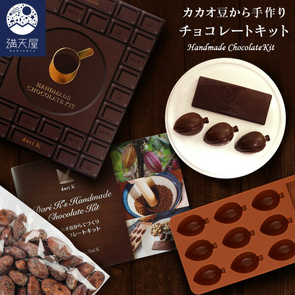 DariK『カカオ豆から手作りチョコレート・キット』