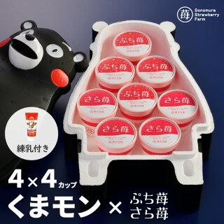 ぷち苺・さら苺4×4カップくまモントップ