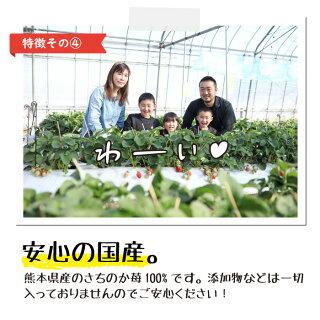 ぷち苺・さら苺4×4カップくまモンの特徴その4