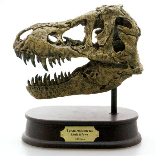 FAVORITE フェバリット 恐竜フィギュアスカル&ジョーズティラノサウルス スカル 【sm...