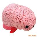 ジャイアントマイクロブスぬいぐるみ 脳