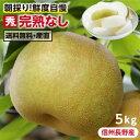 【送料無料】長野県産 梨 5kg 秀品 幸水 豊水 二十世紀