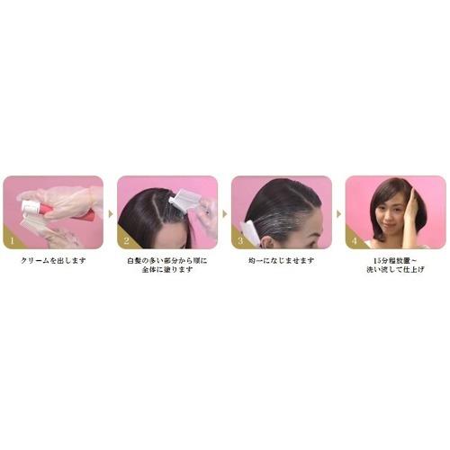 シエロ ヘアカラー EX クリーム 4P ピュアブラウン(1セット)【シエロ(CIELO)】