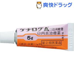 【第(2)類医薬品】ケナログA 口腔用軟膏(5g)