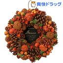 グリーンハウス ナチュラルリース スタンド付 L HW417-A オレンジデイズ
