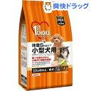 ファーストチョイス 成犬(10ヶ月以上) 体重5kg以下 小型犬用 / ファーストチョイス(1ST CHOICE...