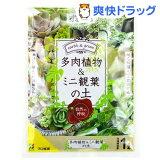 多肉植物&ミニ観葉の土(1L)