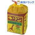 キリンラーメン みそ味(6食入)