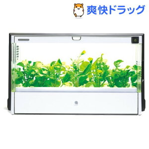 水耕栽培器 グリーンファーム UH-A01E / グリーンファーム(Green Farm)☆送料無料☆水耕栽培器 ...