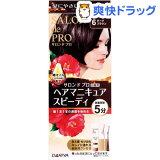 サロンドプロ 白髪用 ヘアマニキュア・スピーディ 6 ダークブラウン(1セット)