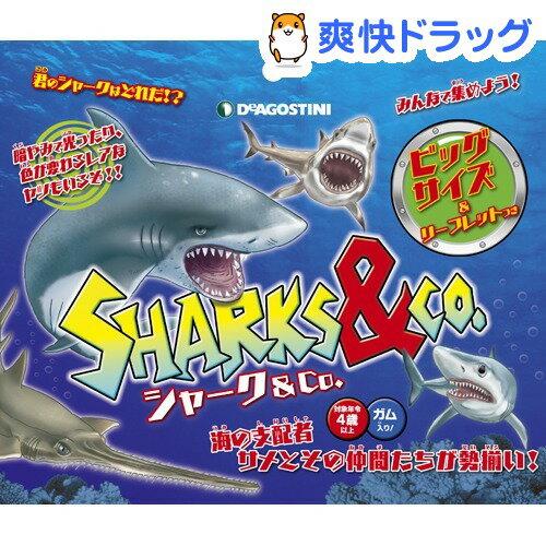 シャーク&Co.(1個)
