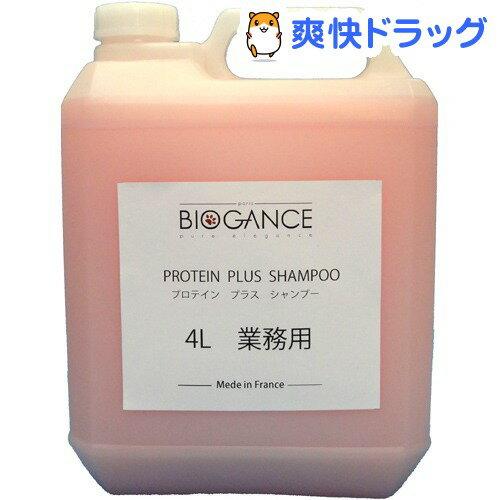 バイオガンス プロテインプラスシャンプー(4L)【バイオガンス(BIOGANCE)】【送料無料】