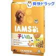 アイムス 12か月までの子いぬ用 チキン 小粒(8kg)【アイムス】[【iamsd31609】]【送料無料】