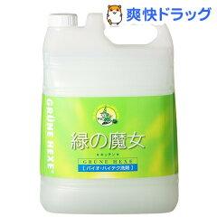 緑の魔女 キッチン(5L)【緑の魔女】[緑の魔女 キッチン 5l 液体洗剤 キッチン用]【送料無料】