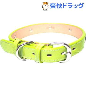 犬用革首輪 Sサイズ AT-131 ライム(1コ入)【送料無料】