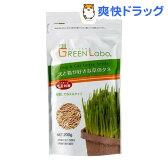 犬と猫が好きな草のタネ(200g)[猫草]