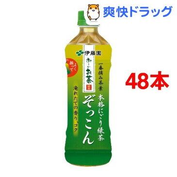 お〜いお茶 ぞっこん(500mL*48本)【お〜いお茶】[ペットボトル]【送料無料】